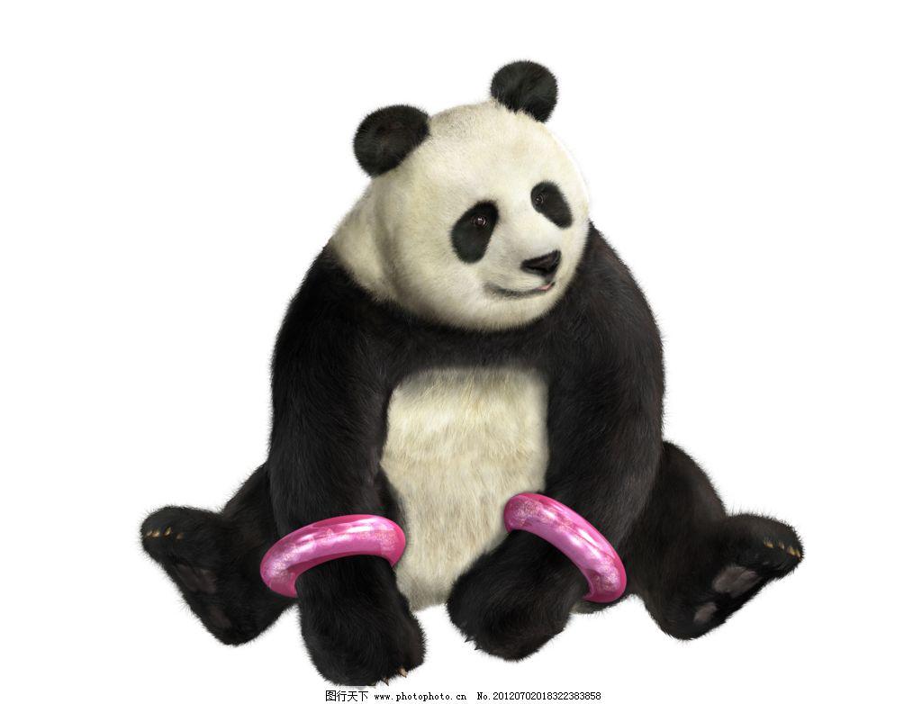 铁拳熊猫 铁拳 格斗 游戏 原画 人物 动漫人物 动漫动画 设计 铁拳
