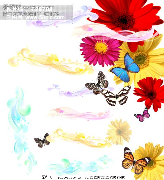 花纹 蝴蝶