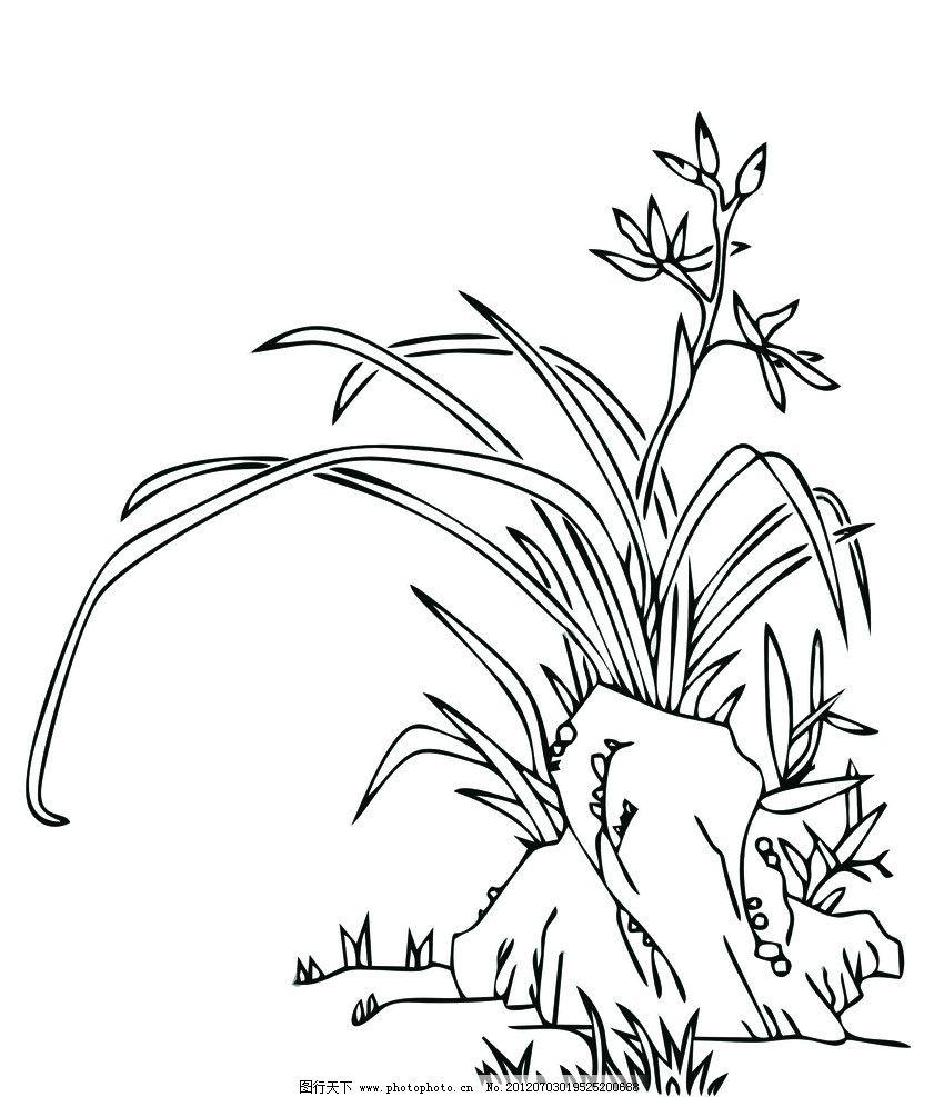 国画 兰花 中国风 线描 古典 写意 花草 矢量装饰画 矢量图 绘画 美术