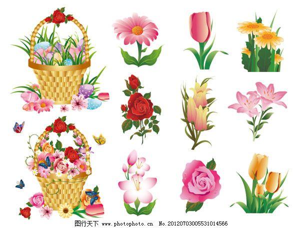 花朵 花卉 菊花 郁金香 玫瑰花 百合花 鲜花 蝴蝶 花篮 篮子 矢量素材