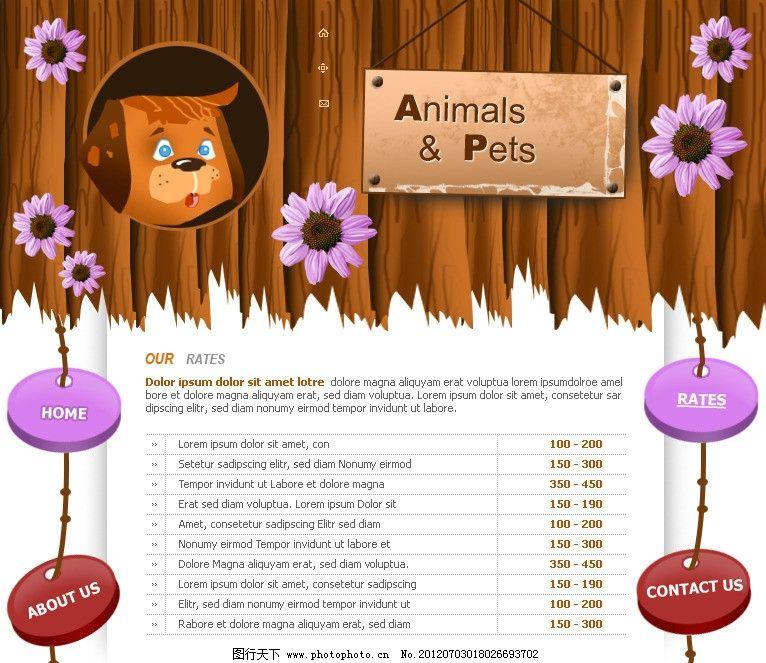 动物网站模版 个人网站 可爱网站 动物网站 棕色页面 设计师网页 欧美