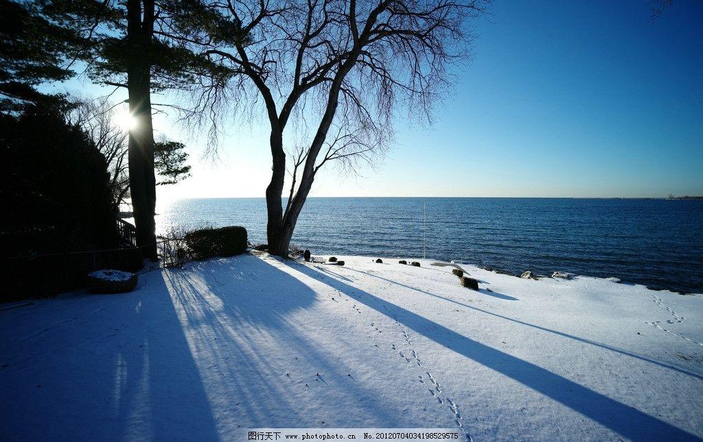 树影 湖边雪景 傍晚 北欧美景 自然风景 旅游摄影图片