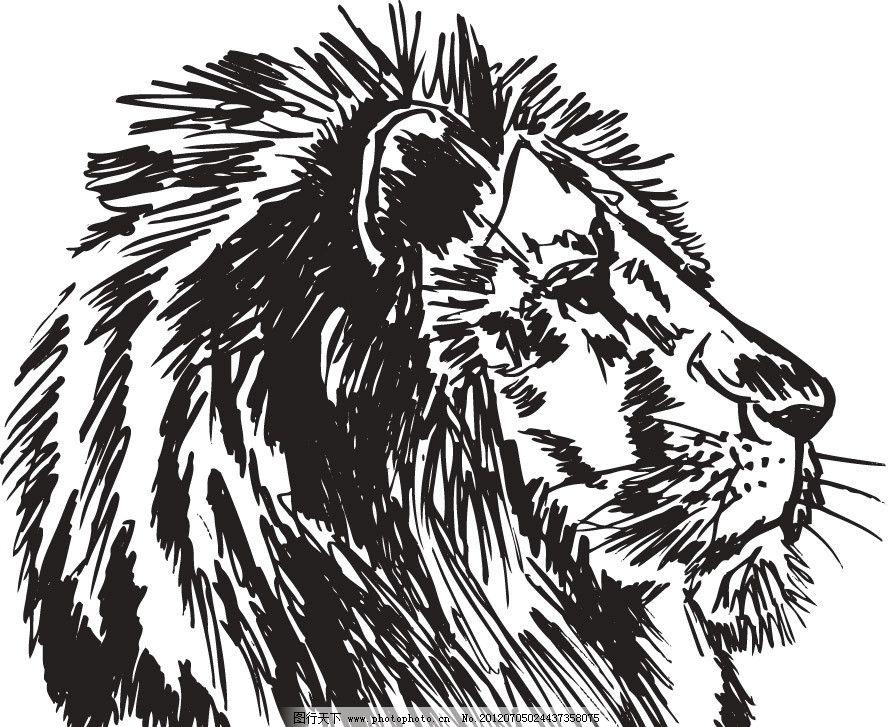 手绘狮子头图片