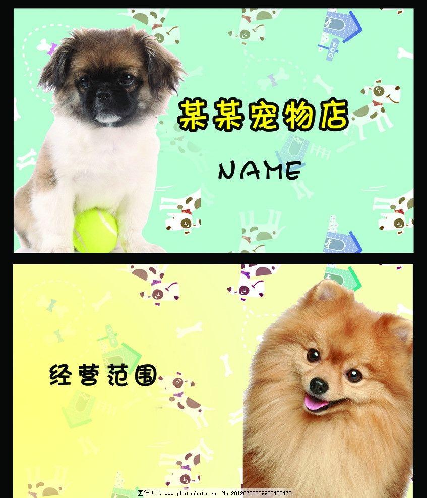 宠物 宠物卡片 可爱名片 动物名片 动物卡片 甜美名片 可爱花形 清新