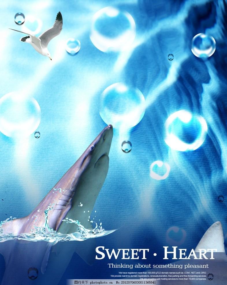 海底世界 鲨鱼 水珠 海鸟 海鸥 海报设计 设计模版 广告设计 广告设计