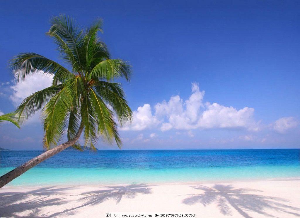 沙滩与椰子树 沙滩 椰子树 大海 蓝天 倒影 自然风景 自然景观 摄影