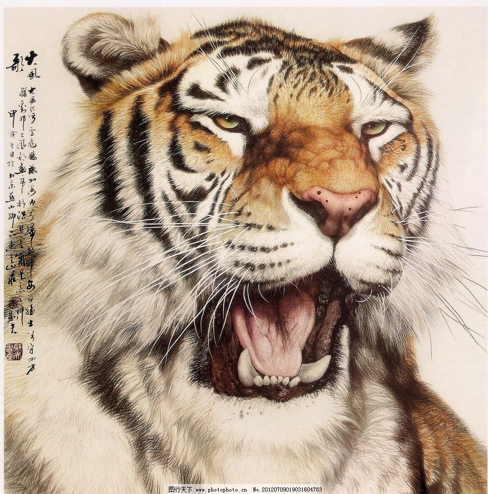 老虎 虎 国画 工笔 动物 猛兽 虎头 绘画书法 文化艺术 设计 200dpi
