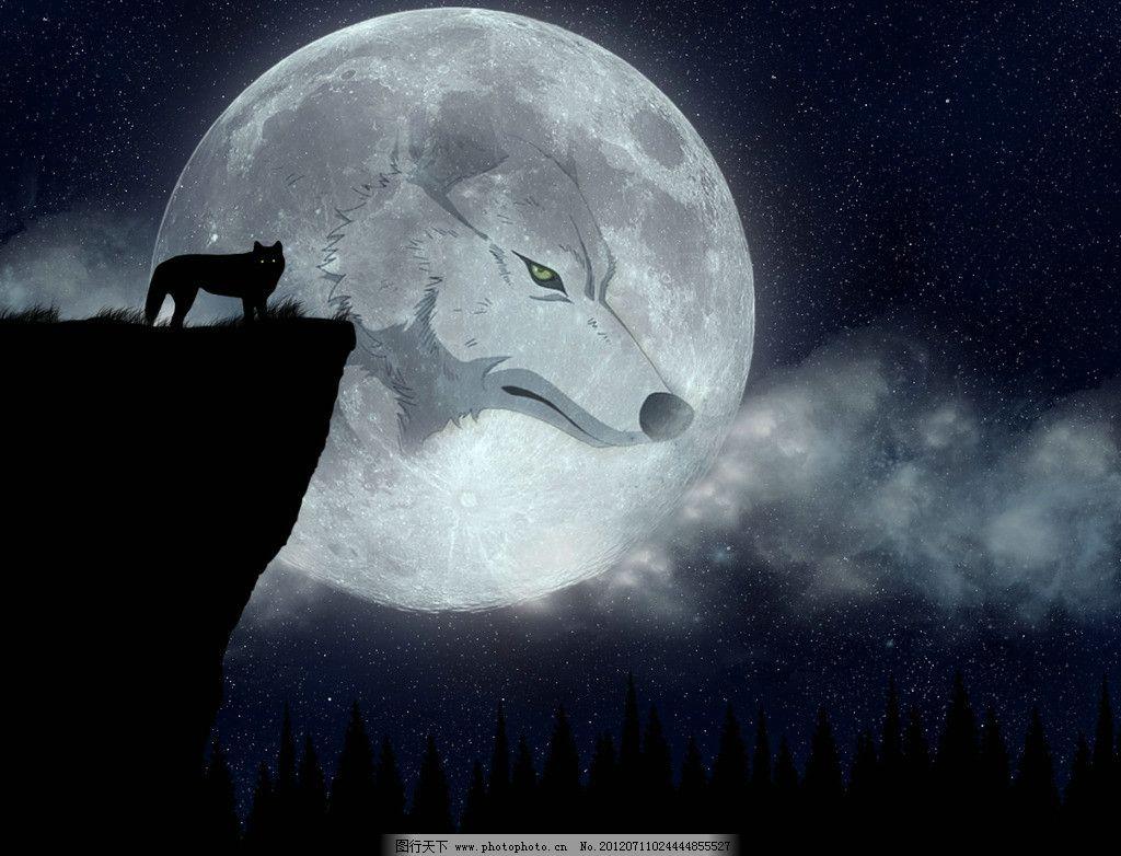 独狼 狼 酷 夜色 大灰狼 卡通 动漫 高清 野生动物 生物世界 设计 500
