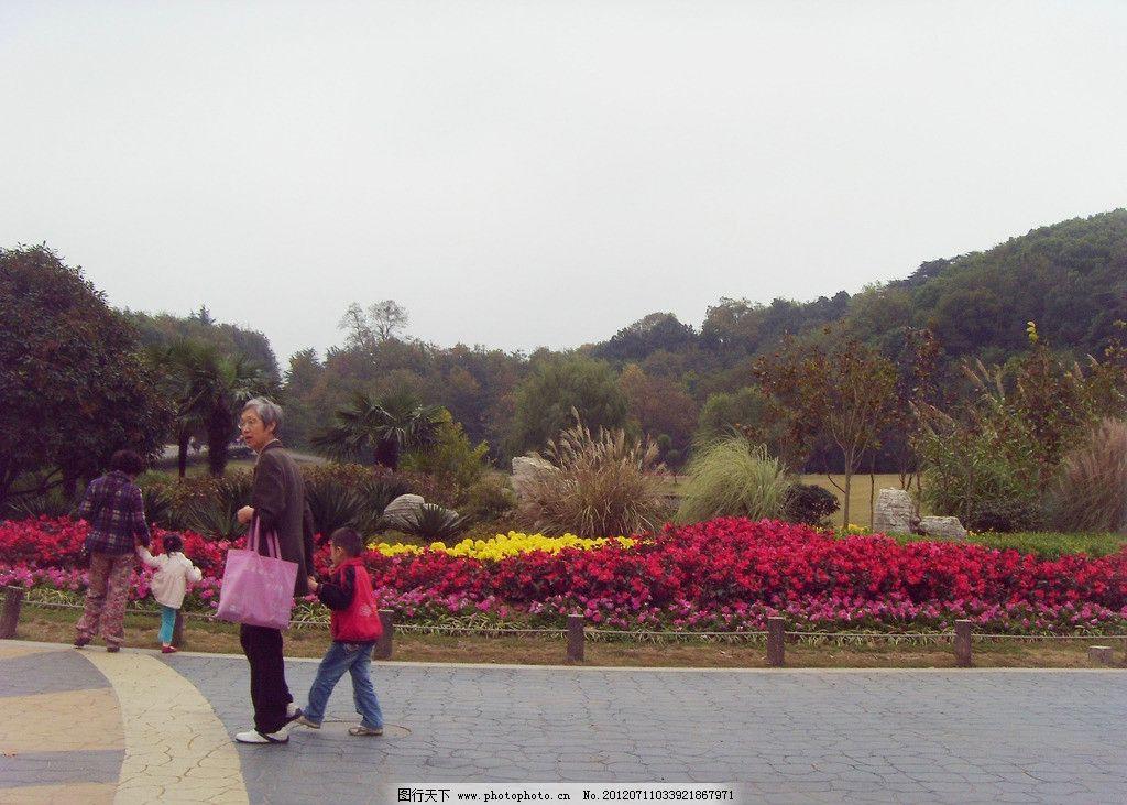 动物园风景 红山森林动物园 江苏 南京动物园 江苏动物园 旅游