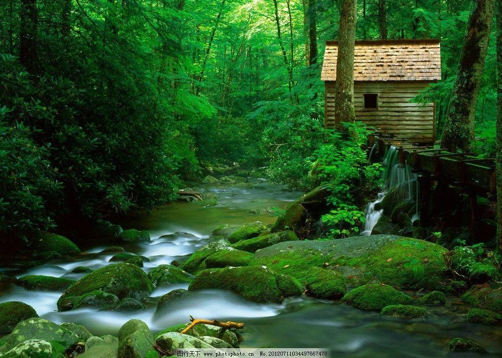 绿野仙踪 小溪 森林 山清水秀 小屋 春色 山水风景 自然景观 摄影 72d