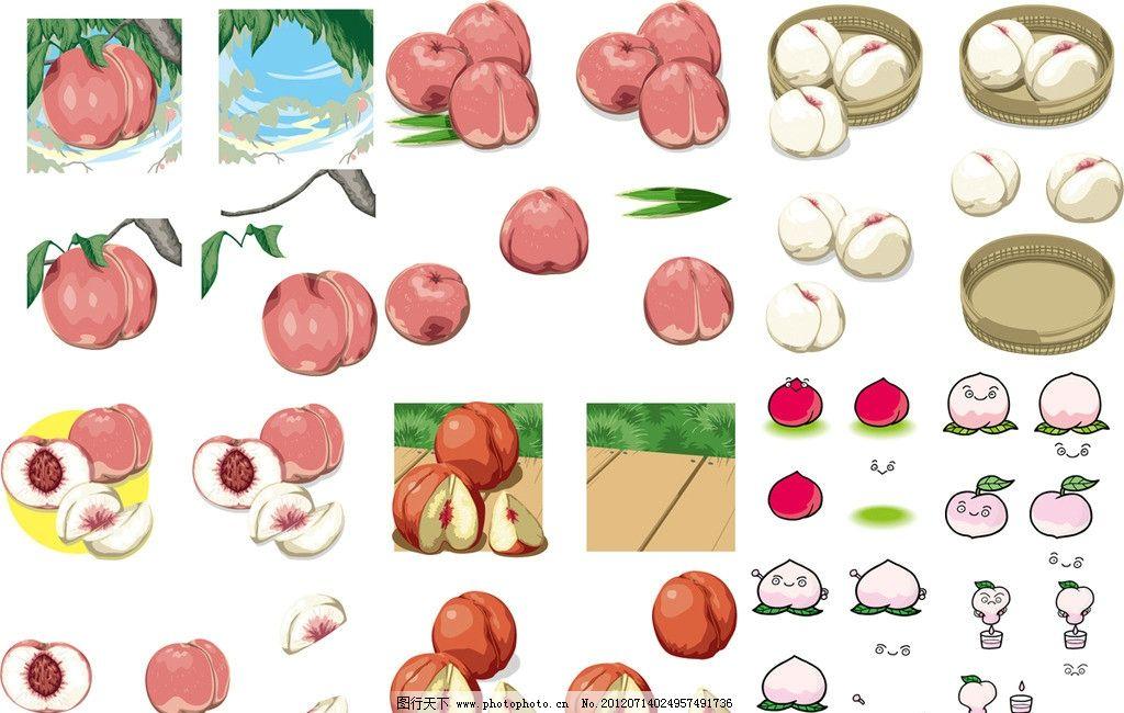 桃子合集 水蜜桃 健康 维生素 手绘 插画 插图 可爱 桃汁 果汁