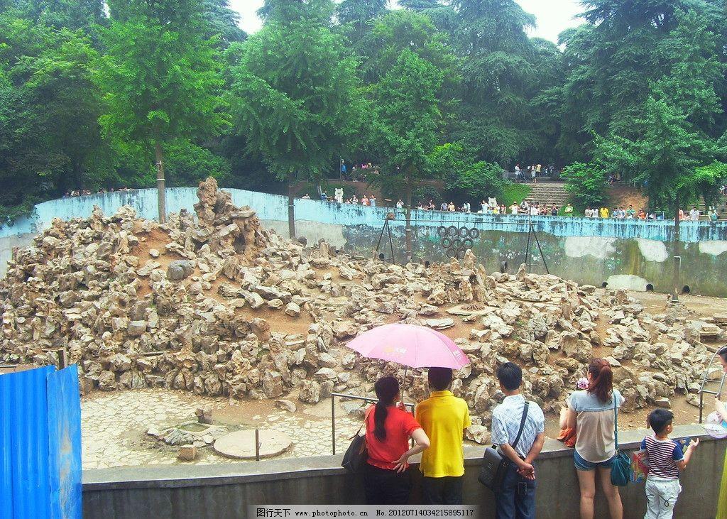 猴山 南京 动物园 红山动物园 红山森林动物园 公园 假山 自然