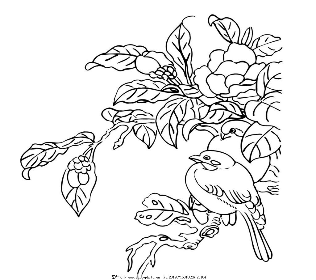 刺绣 花 鸟 古代 中国 传统 文化 图案 花纹 矢量 传统文化 文化艺术