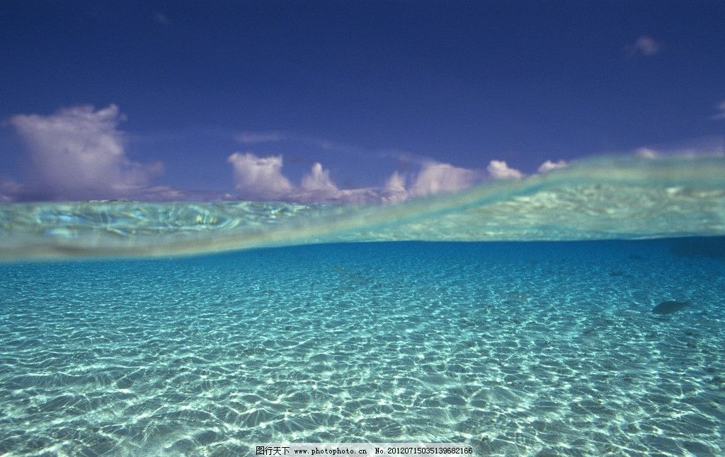 海底世界 海底天空 蓝色海洋 海洋天空 清澈海水 波光粼粼 水族馆