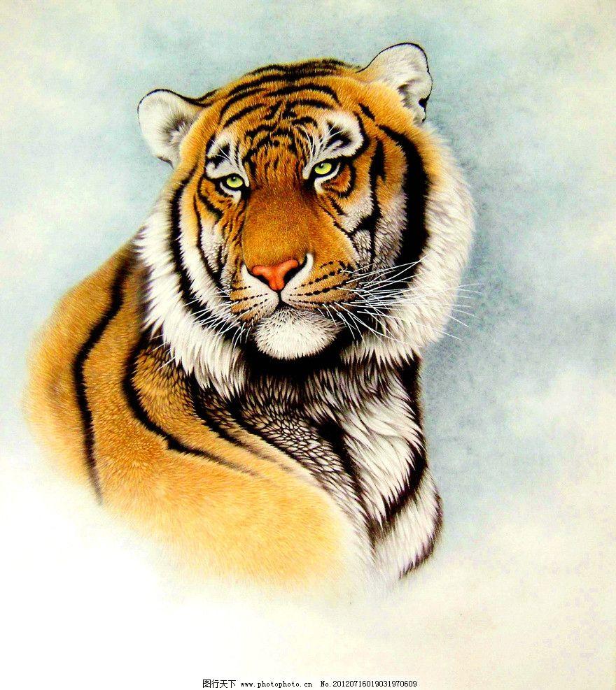 静养 美术 中国画 彩墨画 动物画 老虎画 虎头 虎姿 国画艺术 国画集