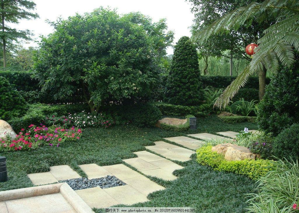 造树 仿石 园林景石 现代园林 花草 树木 人文景观 植物 地面 铺装