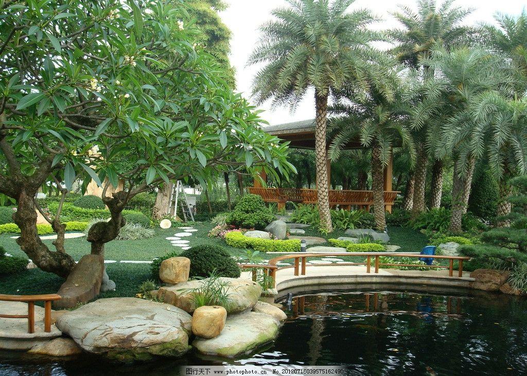 欧式别墅水池植物