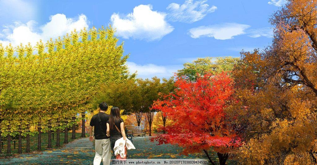 深秋 秋天 枫叶 落叶 设计模板 海报设计 广告设计模板 源文件 300dpi