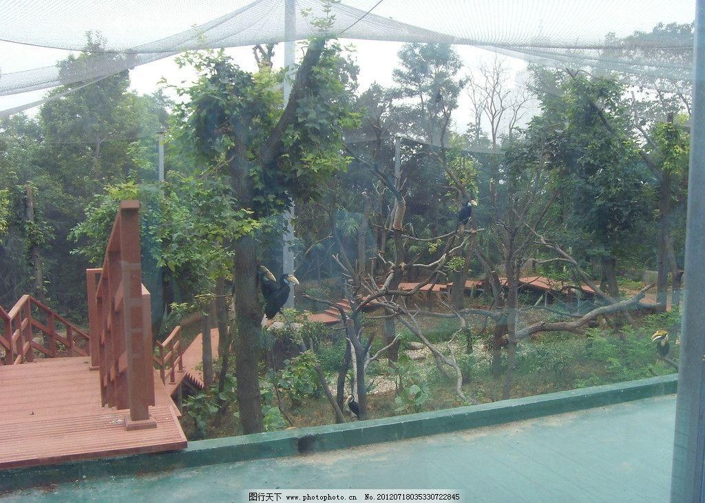 生物世界 野生动物 南京 动物园 摄影图库 红山森林动物园 动物园风景