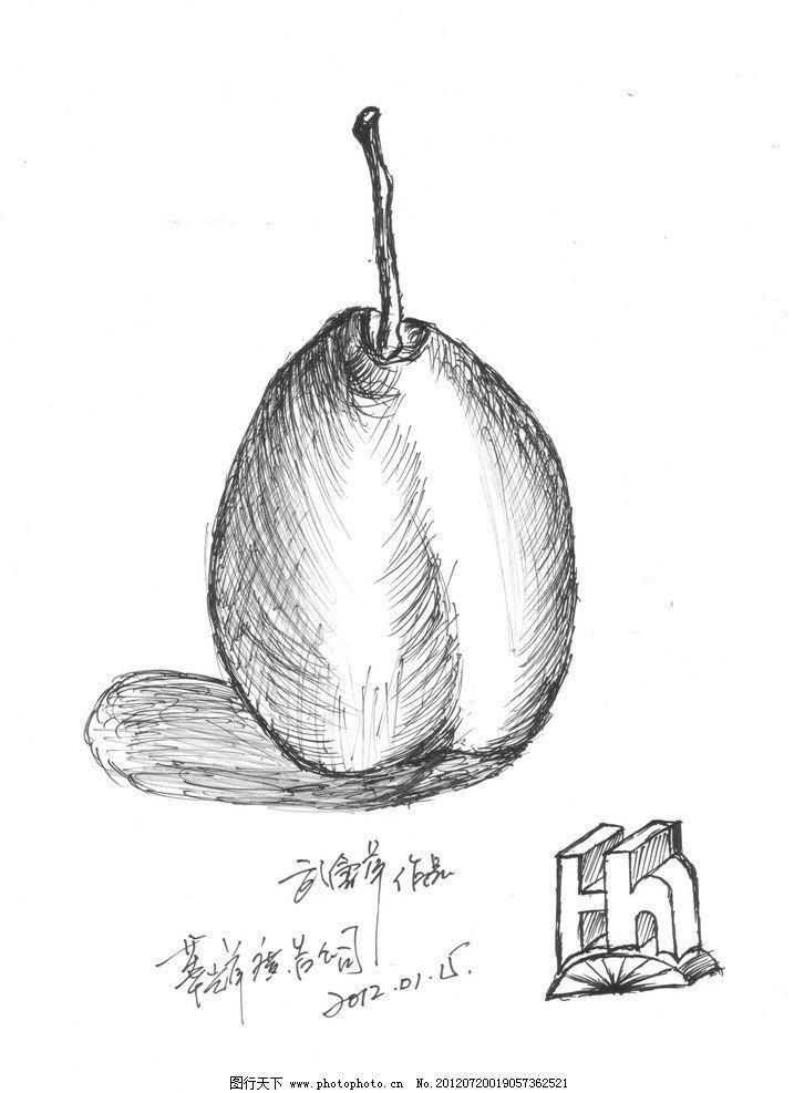 雪梨 静物素描 梨 静物 素描 手绘 标志设计 素描基础 绘画书法 文化