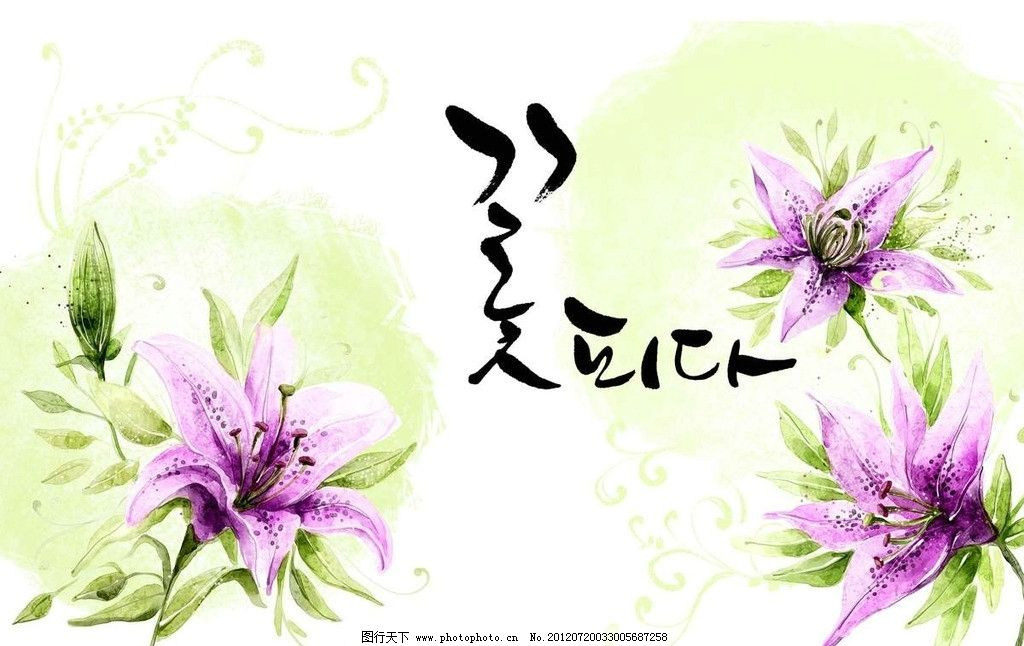 韩国鲜花背景 鲜花 花瓣 绿植 植物 花朵 花心 花蕊 韩国 韩文 水墨画