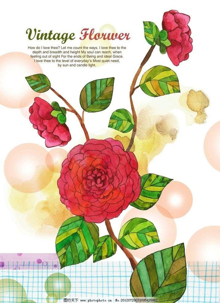 牡丹花背景 鲜花 花朵 绿叶 叶子 花叶 花瓣 月季花 水墨画