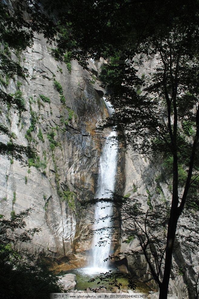 太平国家森林公园图片