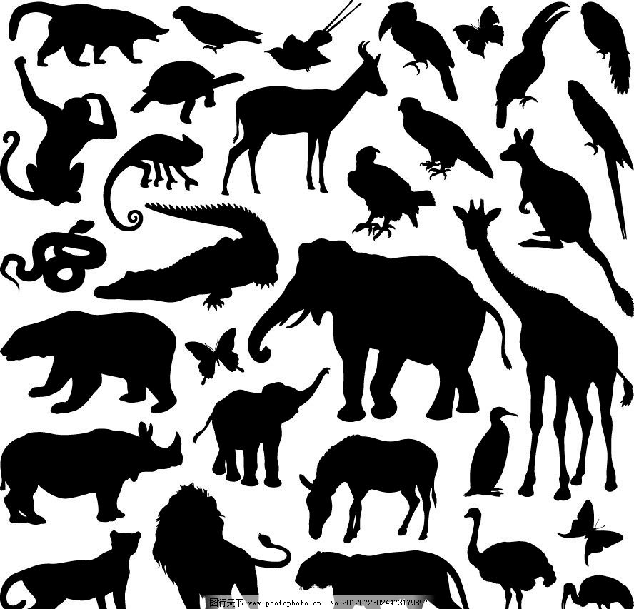 动物剪影 大象 长颈鹿 狮子 豹子 老虎 犀牛 狗熊 鳄鱼 猴子