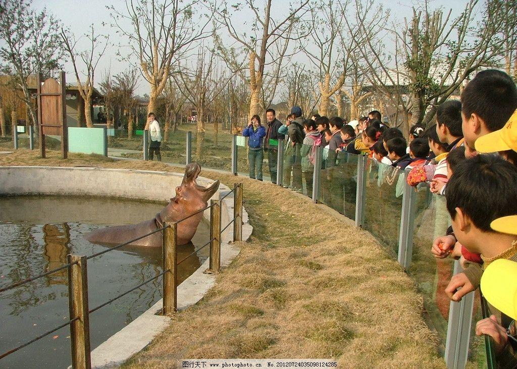 常州春秋淹城动物园图片