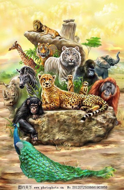 手绘森林动物海报