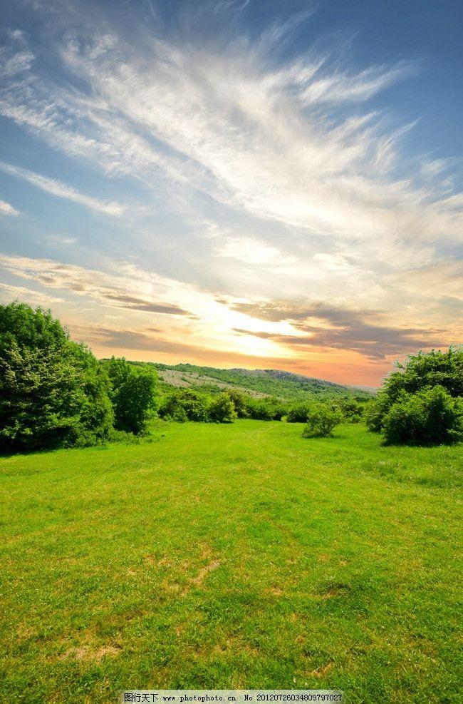 蓝天白云绿野绿树图片