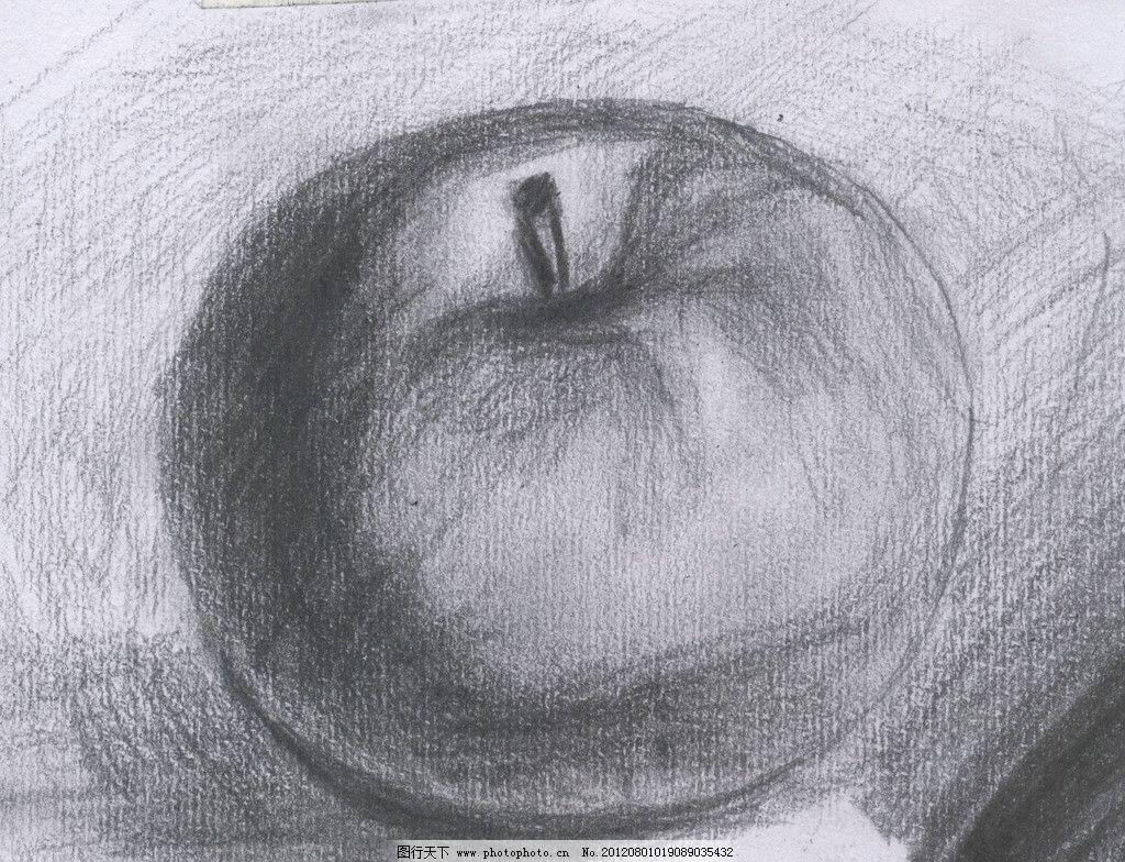 苹果素描 素描 静物 苹果 线条 绘画书法 文化艺术 设计 600dpi tif