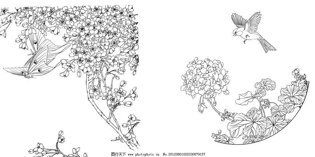 蝴蝶素描画步骤图片