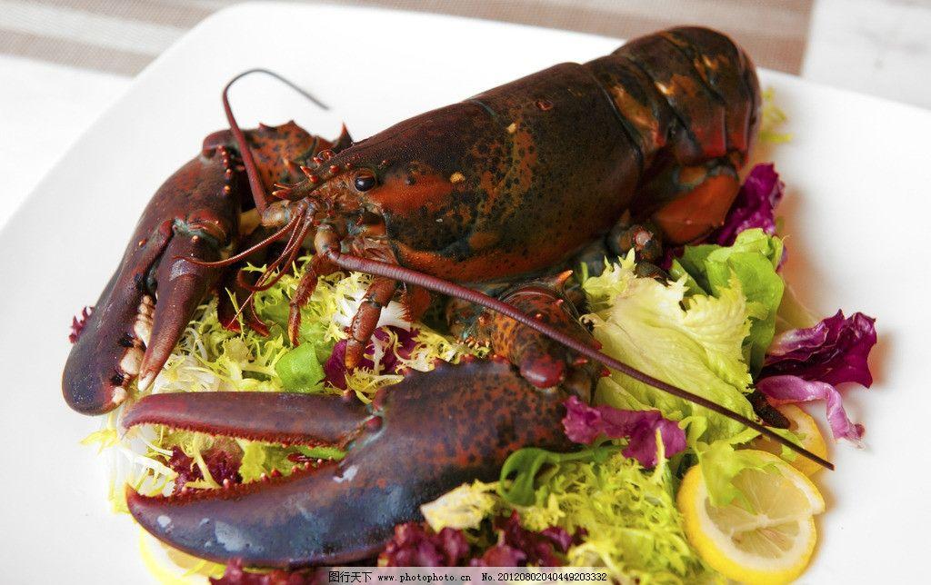 波士顿大龙虾 波士顿 大龙虾 海鲜 烧烤 自助餐 新鲜食材 蔬菜色拉