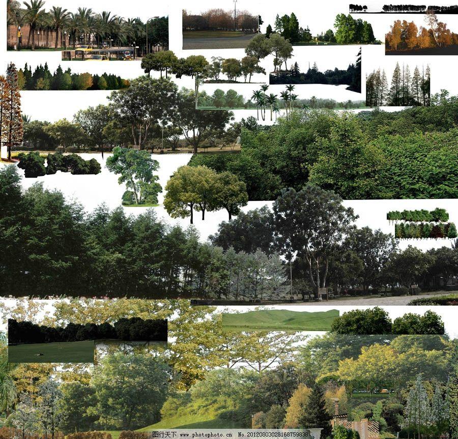 远景树 绿树 风景 远景 树木树叶 景观 景观设计 环境设计 源文件 72