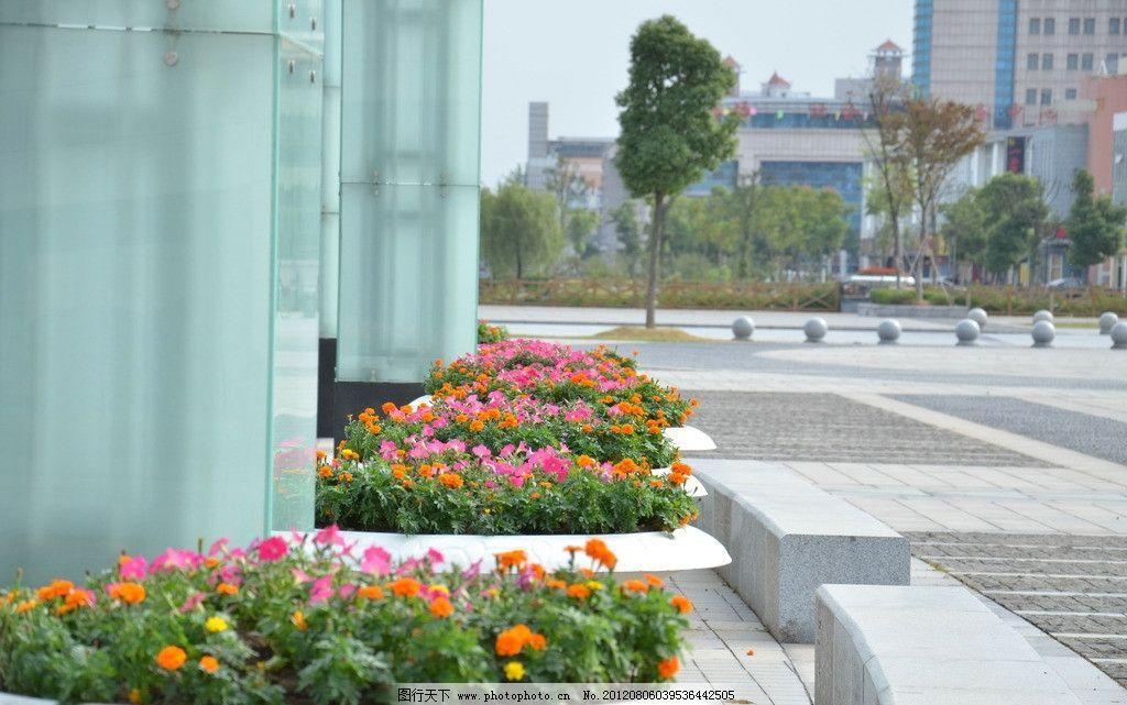 广场绿化 花盆 花池 市政广场 花圃花卉 景观绿化 园林建筑 建筑园林