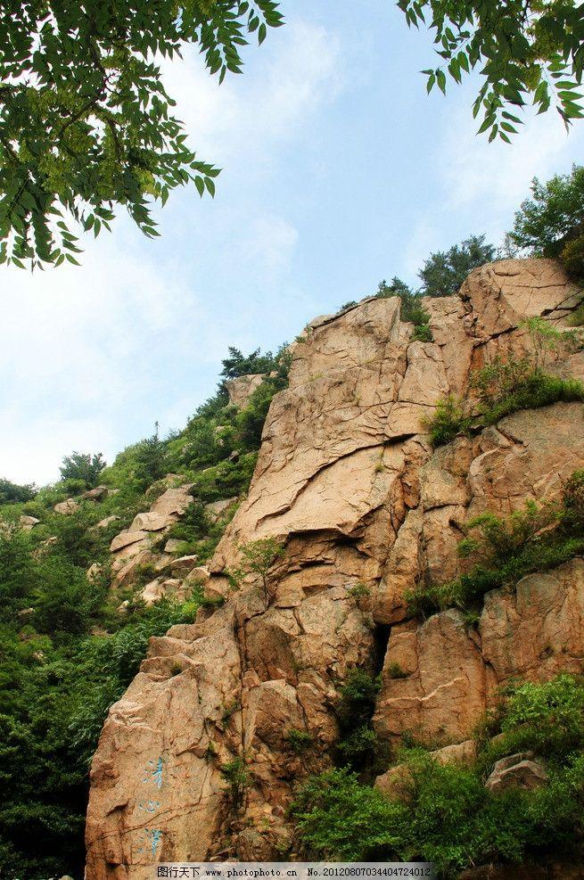 峭壁 森林 树林 山峰 悬崖 树木 绿色 威严 壮丽 崂山风景 山水风景