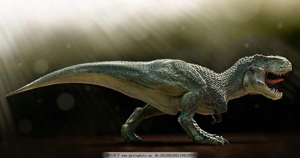 动物 史前动物 爬行动物