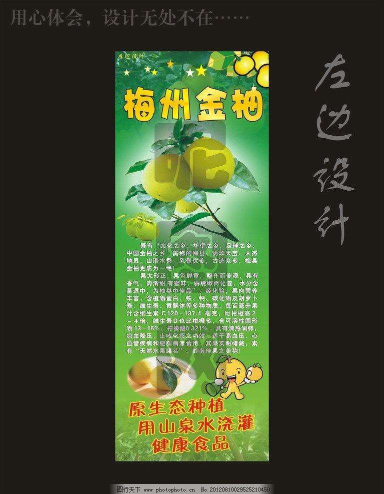 梅州金柚 柚子图片 柚子宣传 柚子海报 柚子柚子 正宗柚子 家乡特产