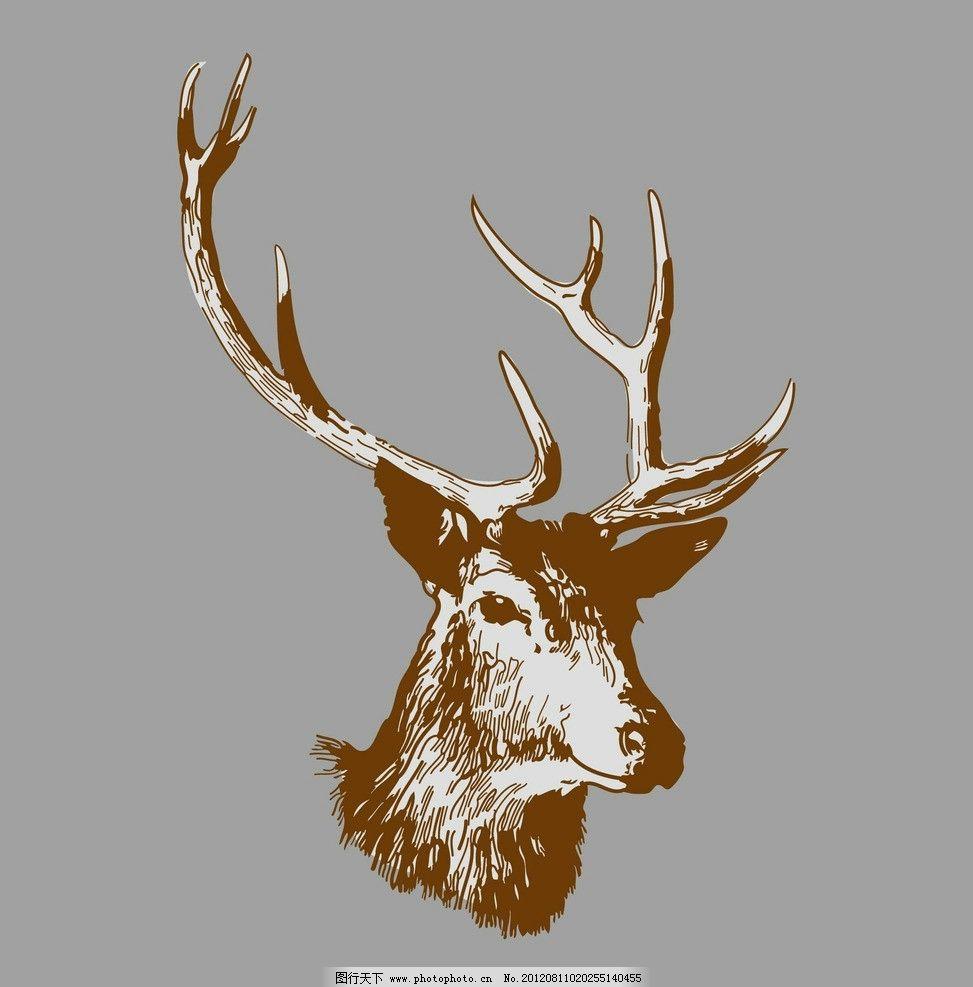 麋鹿图片图片