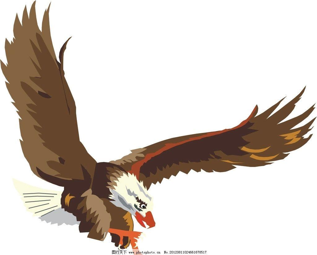 老鹰 飞翔 翅膀 鸟类 生物世界 矢量 cdr
