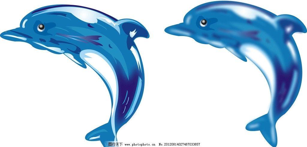 海豚 蓝色 兰色 海 豚 矢量图 动物 海洋动物 深海之豚 鱼 海水 海洋