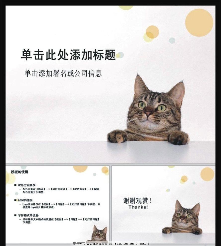 猫 宠物店pt 个人ppt 宠物 护理 爱护动物 可爱小猫 喵咪 ppt模板下载