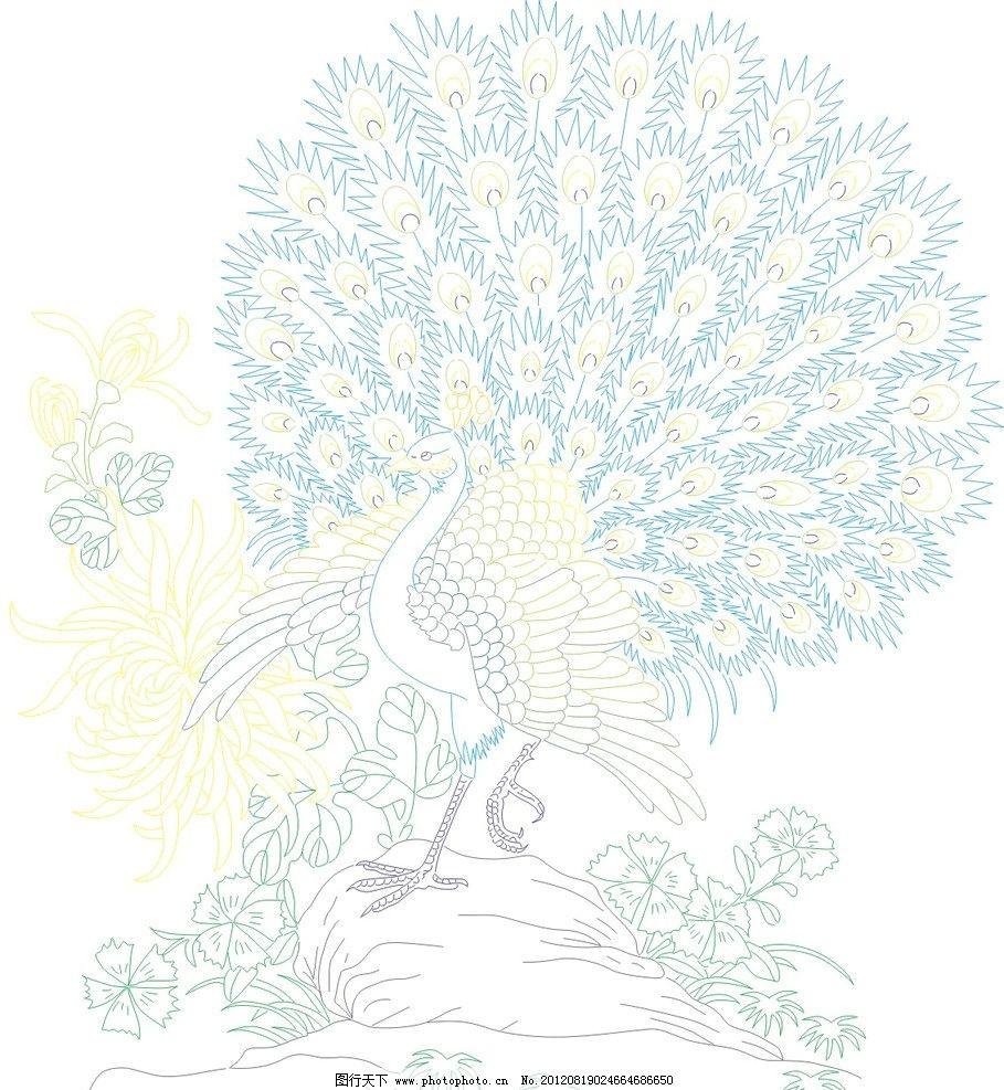 孔雀 孔雀开屏 菊花 石头 鸟类 生物世界 矢量 cdr图片