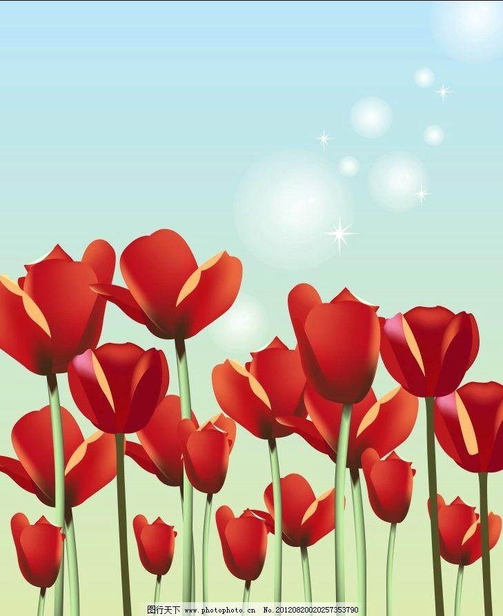 红花图片_背景底纹
