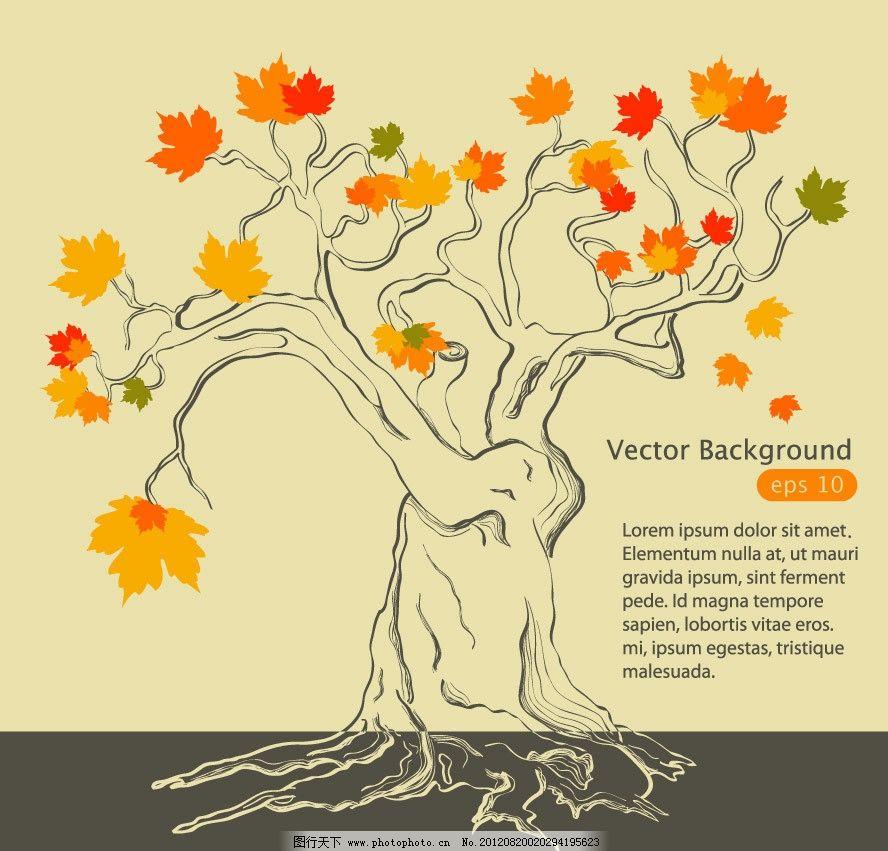 手绘线条秋天的枫叶树图片