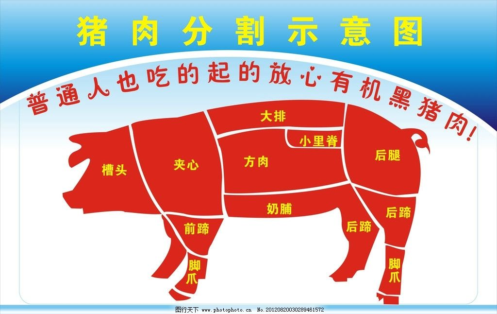 猪肉分割示意图图片