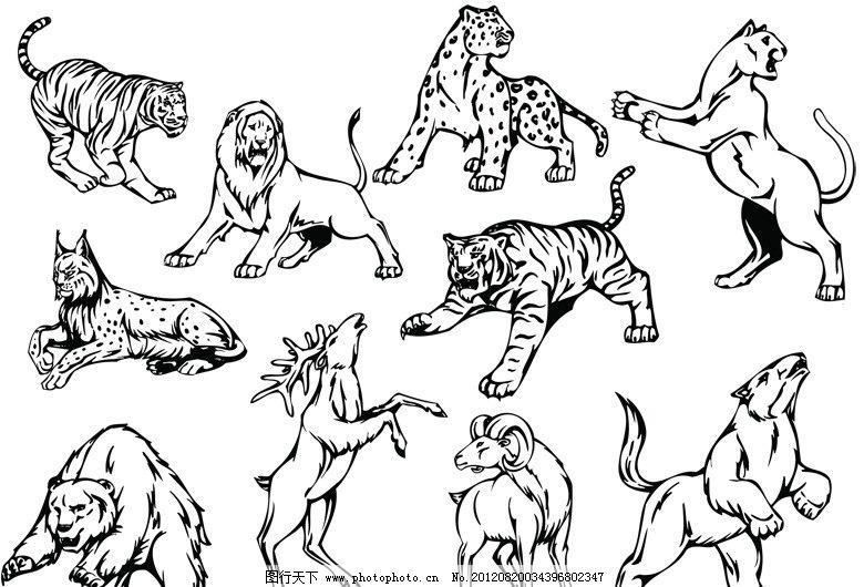 线稿动物图案图片