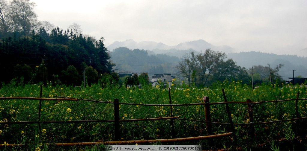 江西婺源风景图片