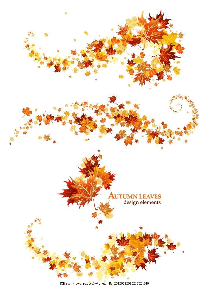 设计图库 底纹边框 背景底纹  秋天枫叶背景 枫叶 红叶 树叶 空白